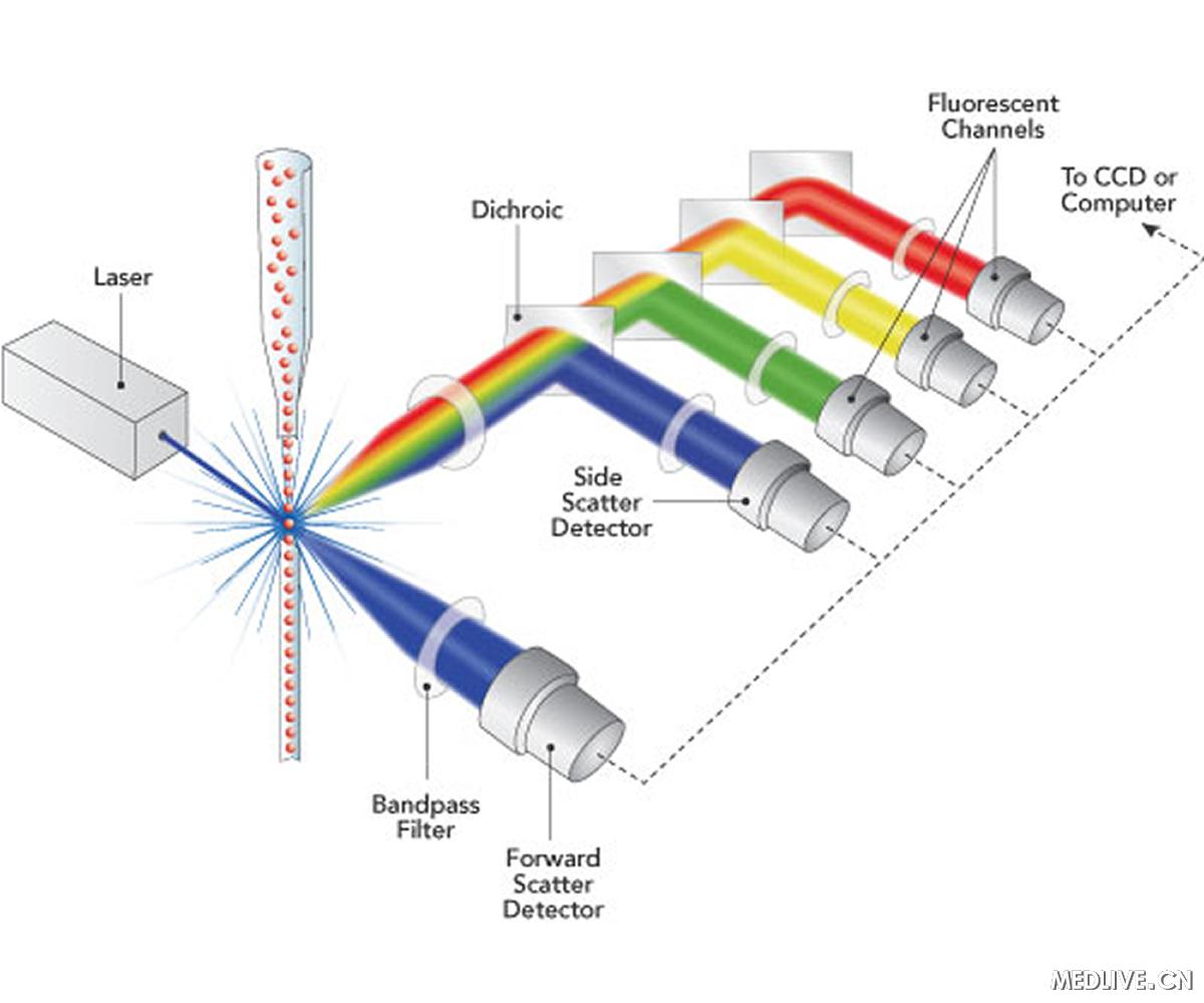 美国尿液测男女的原理_电流探头测试高频时的工作原理