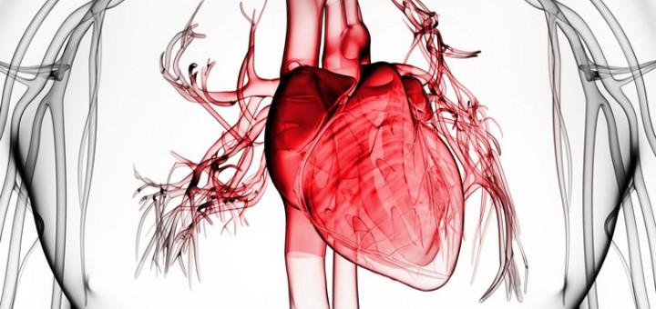 专家视点:如何治疗射血分数下降的心衰? - gloryking3 - gloryking3的博客