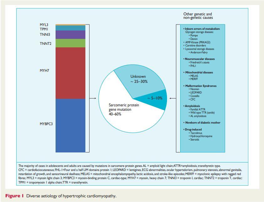 疾病百科 疾病症状 肌病  内容简介: 2014年欧洲心脏病学会(esc)年会图片
