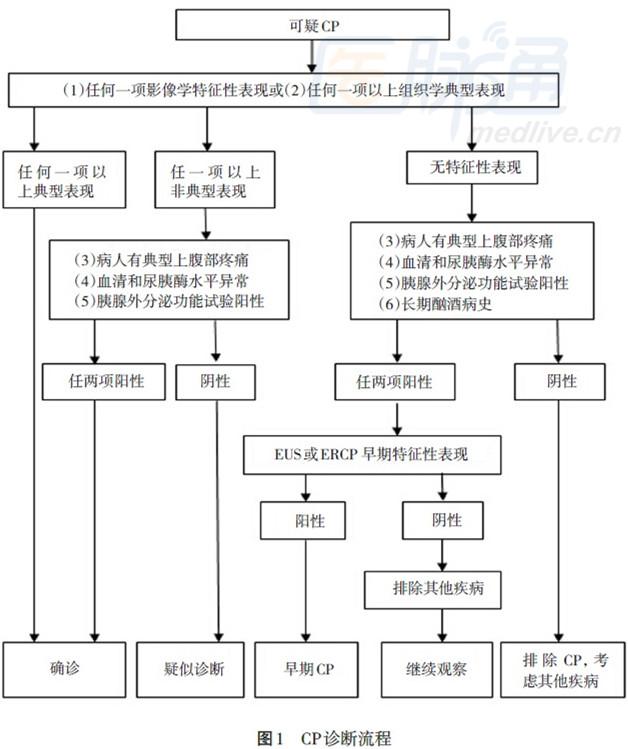 慢性胰腺炎的诊断,分类和分期