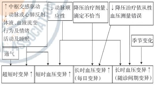 血压的原理_图2-10 血压的调节机制