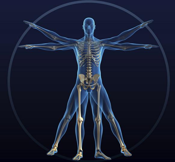 新型骨移植体使骨骼损伤的患者摆脱烦恼