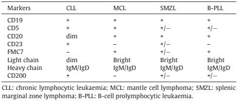 【综述】慢性淋巴细胞白血病的诊断