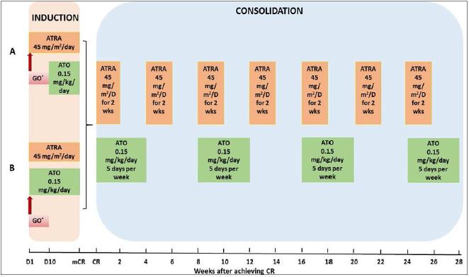 APL经无化疗方案治疗的长期预后如何?
