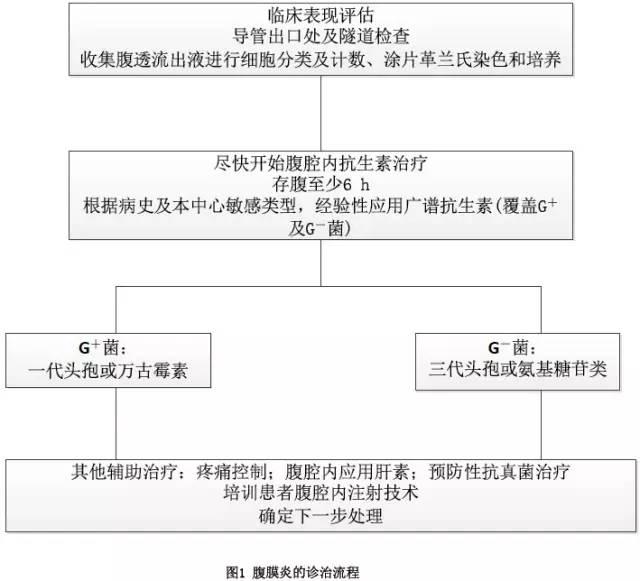 腹膜透析患者腹膜炎的预防和治疗